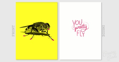 you pretty fly