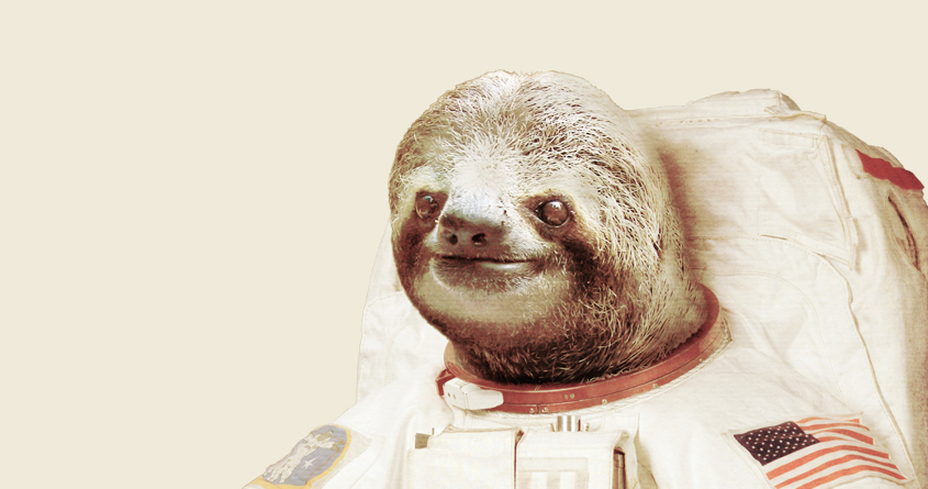 sloth astronaut picture - 845×445